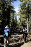 On the Cathedral Lake Trail