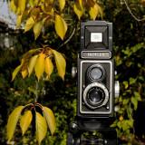 The Zeiss-Ikon  Ikoflex 1a Twin Lens Reflex camera