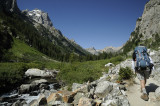 Hiking up the Cascade Canyon