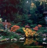 Hakone Gardens in 120 Film