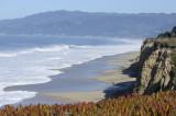 Cliffs of Wavecrest