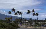 Trade winds at Kahului Airport