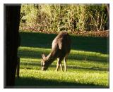 Dec 4 - Hike at Sanborn County Park