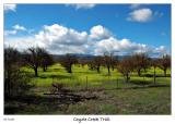 Feb 19 - Bike ride on the Coyote Creek Trail