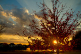 2010-10-22 Sunset (9).JPG