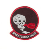 US NAVY ATTACK SQUADRONS