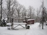 winter 08-09