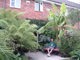 Exotic Gardening In Knotty Ash, Liverpool (UK)