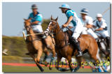 Outback Polo Team vs. Tres Vinos/Cheval - Final ( March 4th 2006 )