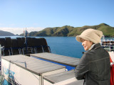 Ferry entering the picton
