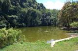 Danau kecil ditepi jalan