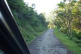 jalan sempit tapi pemandangan bagus