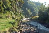 sawah tepi sungai
