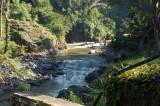 suasana pagi di tepi sungai