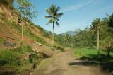 jalan perkampungan