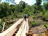 inspeksi jembatan kayu