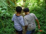 Menembus Taman Nasional Gede Pangrango