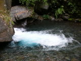 River from Senaru waterfall