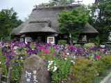 A Nice Resturant in old style house in flower garden