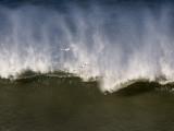 Surf _1063006.jpg