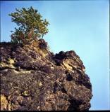 Endangered Places: Rosia Montana