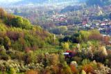 Bistrita village