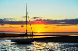 Cape Cod 2008