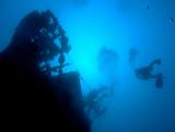 Komiza, Vis Island, Croatia - Underwater Photography