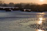 L'étang de Bihécourt