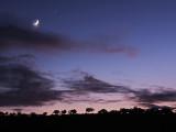 Moon, Venus & Jupiter