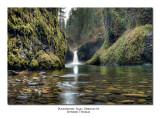 Punchbowl Falls, Oregon #1