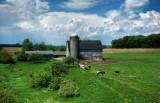 Farm on Hwy. XX in Manitowoc County