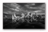 Mono Lake - Monochrome