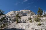 Mammoth Falls Yellowstone National Park