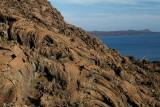 Galapagos1-5.jpg