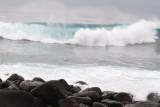 Galapagos1-8.jpg
