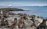 Galapagos1-12.jpg