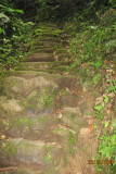 more and more little, bitty steps
