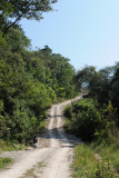 The Road to Timushan