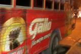 Gallo Bus
