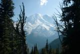 Mt. Rainer 3