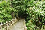 Tabin - Tabin Wildlife Reserve Broadwalk