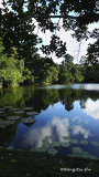 Sepilok - Rainforest Discovery Centre lake