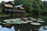 Sepilok - Rainforest Discovery Centre lakeside restaurant