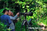 Peter Kan, wong Tsu Shi and Ku Kok On reviewing bird image