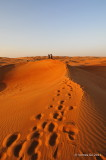 Desert Safari D300_27612 copy.jpg