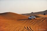 Desert Safari D700_16665 copy.jpg