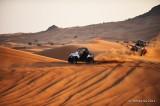 Desert Safari D700_16674 copy.jpg