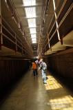Alcatraz D300_06742 copy.jpg