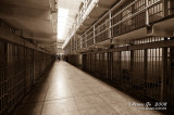 Alcatraz D300_06796 copy.jpg